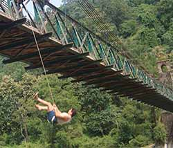 BRIDGE SLITHERING in Jim Corbett